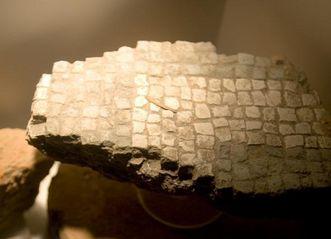 Rest eines Mosaiks, Ausstellungsstück in der römischen Badruine Hüfingen; Foto: Staatliche Schlösser und Gärten Baden-Württemberg, Achim Mende